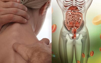 Verdauung meets Osteopathie – Praxisnahe Tipps zur Verdauung und Nervensystem