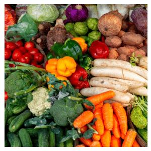 viele verschiedene Gemüse