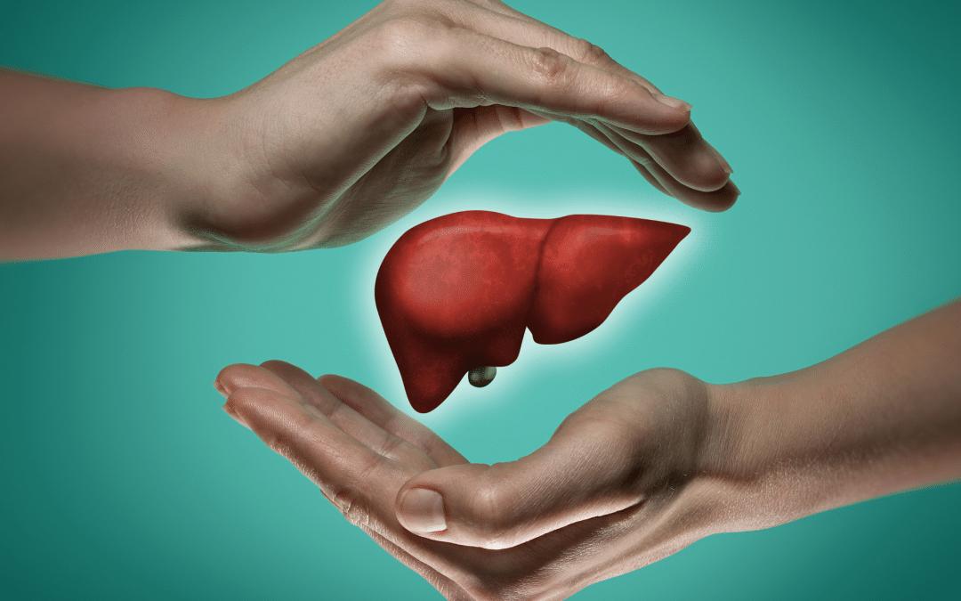 Leber: Der Schmerz der Leber ist die Müdigkeit! – Unser wichtigstes Stoffwechselorgan