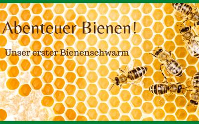 Unser erster Bienenschwarm: ein irres Naturschauspiel!
