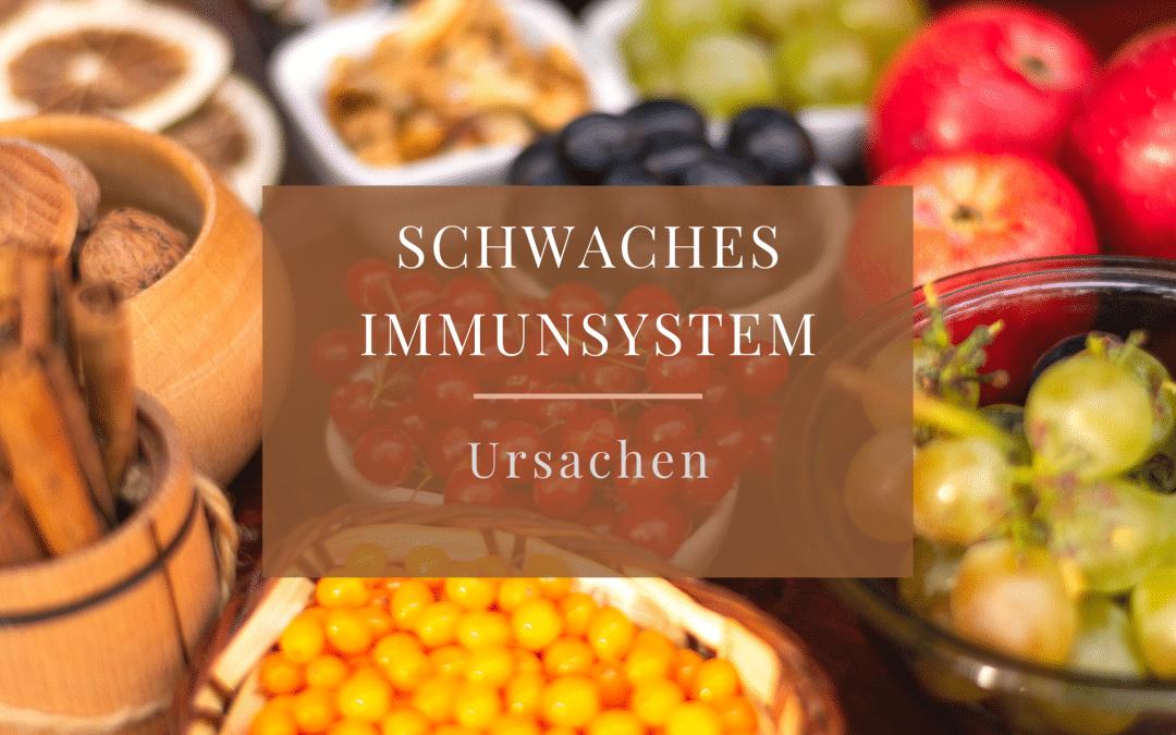Immunsystem – Den Abwehrkräften auf der Spur Teil 2